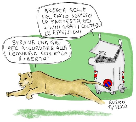 rusko e la leonessa